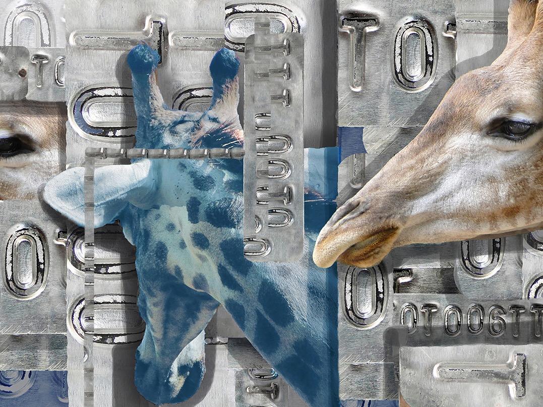 """Exposição """"Animallis"""" acontece hoje no Espaço Cultural de Criação, na Boa Vista."""